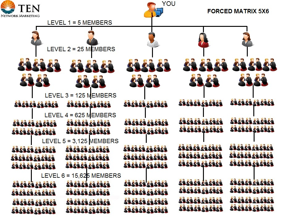 TEN Compensation Plan Forced Matrix 5x6